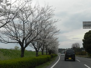Japan road side