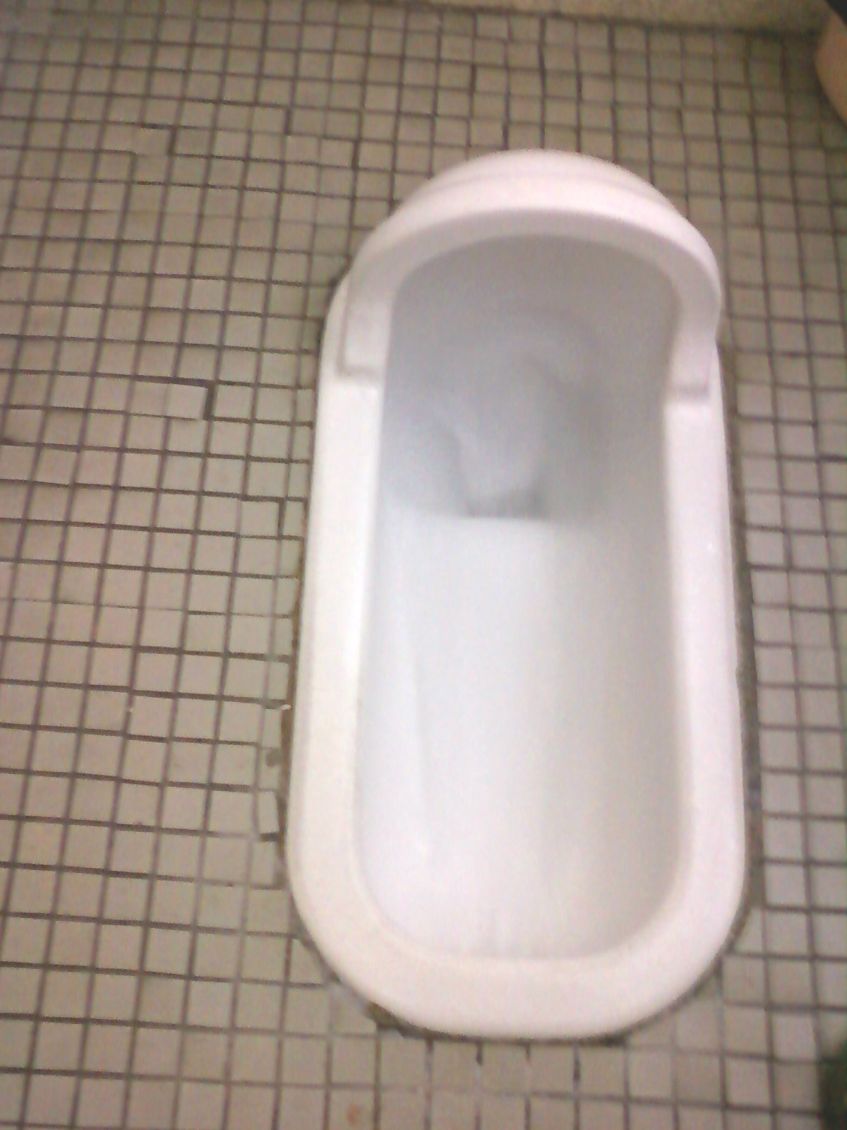 An Insider's Look at Japan: The Squat Toilet