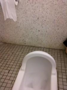 squat toilet 02